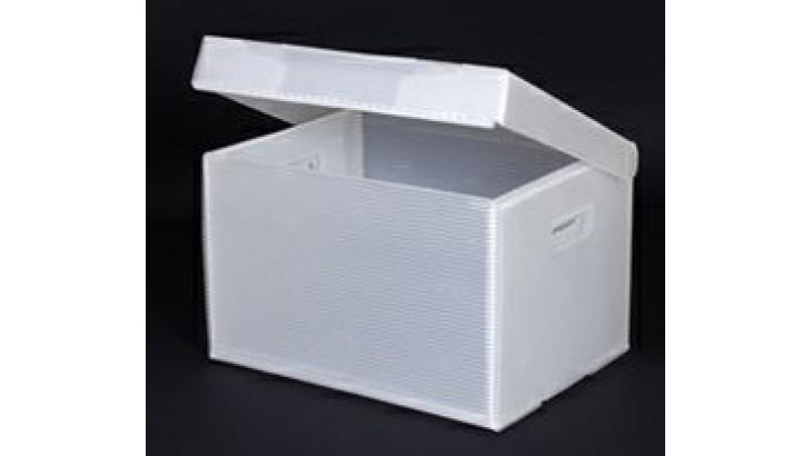 arşiv kutusu